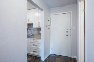 Photo 15: 220 1025 Inverness Rd in Saanich: SE Quadra Condo for sale (Saanich East)  : MLS®# 888132
