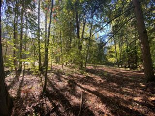 Photo 15: 4665 CRESCENT ROAD in Nelson: Vacant Land for sale : MLS®# 2461363