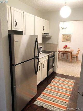 Photo 6: 313 1025 Inverness Rd in VICTORIA: SE Quadra Condo for sale (Saanich East)  : MLS®# 833149