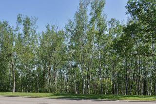 Photo 48: 230 OMAND Drive in Edmonton: Zone 14 House for sale : MLS®# E4239966