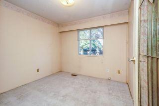 Photo 19: 21260 COOK Avenue in Maple Ridge: Southwest Maple Ridge House for sale : MLS®# R2530636