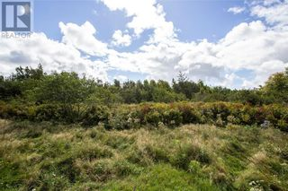 Photo 24: 565 Immigrant RD in Cape Tormentine: Vacant Land for sale : MLS®# M137540