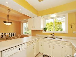 Photo 6: 995 Lucas Ave in VICTORIA: SE Lake Hill House for sale (Saanich East)  : MLS®# 639712