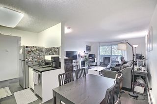 Photo 6: 202 1513 26th Avenue SW 26th Avenue SW in Calgary: South Calgary Apartment for sale : MLS®# A1117931