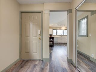Photo 2: 533 50 Avenue SW in Calgary: Windsor Park Detached for sale : MLS®# A1063858