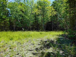 Photo 5: 8 Shady Lane in Loch Broom: 108-Rural Pictou County Vacant Land for sale (Northern Region)  : MLS®# 202117520
