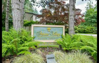 Photo 1: 202 4101 Yew Street in Vancouver: Arbutus Condo for sale (Vancouver West)  : MLS®# R2383784