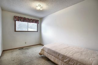 Photo 13: 4323 49 Street NE in Calgary: Whitehorn Detached for sale : MLS®# A1043612