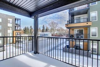 Photo 25: 1214 1317 27 Street SE in Calgary: Albert Park/Radisson Heights Apartment for sale : MLS®# A1070398