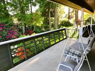 """Photo 32: 3321 DALEBRIGHT Drive in Burnaby: Government Road House for sale in """"GOVERNMENT RD AREA"""" (Burnaby North)  : MLS®# R2268285"""