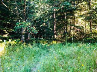 Photo 19: 473 FELIX JACK Road: Mayne Island Land for sale (Islands-Van. & Gulf)  : MLS®# R2597581