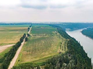 Photo 13: 50362 RR 281: Rural Leduc County Rural Land/Vacant Lot for sale : MLS®# E4255480
