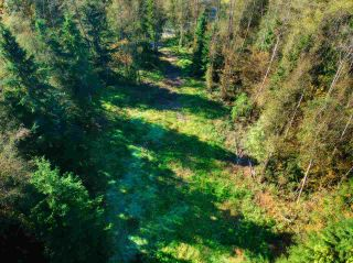 Photo 14: 30255 BRACKLEY Avenue in Mission: Stave Falls Land for sale : MLS®# R2527114