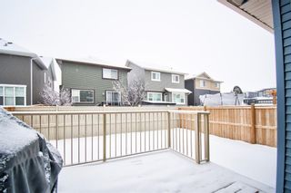 Photo 39: 10 Kingsbury Close SE: Airdrie Detached for sale : MLS®# A1059549