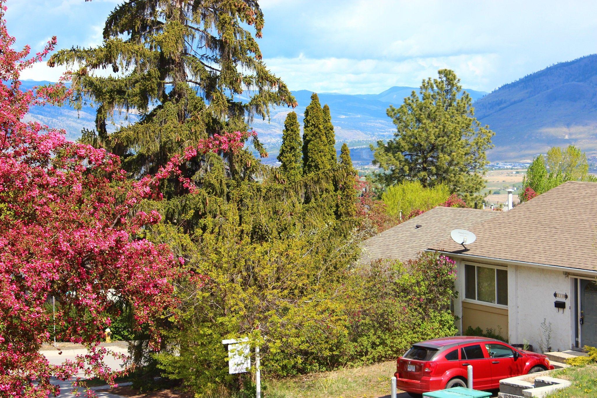 Photo 1: Photos: 317 Waddington Drive in Kamloops: Sahali 1/2 Duplex for sale : MLS®# 161942