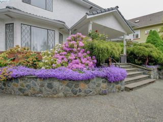 Photo 24: 4295 Oakfield Cres in VICTORIA: SE Lake Hill House for sale (Saanich East)  : MLS®# 815763