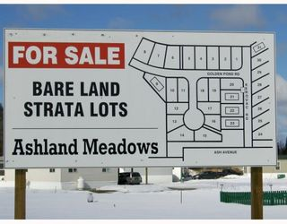 """Photo 1: LOT 5 ASH Avenue in Quesnel: Red Bluff/Dragon Lake Land for sale in """"ASHLAND MEADOWS"""" (Quesnel (Zone 28))  : MLS®# N190470"""
