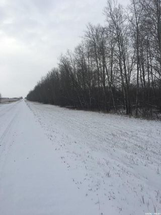 Photo 6: 65 acres land in Preeceville: Lot/Land for sale : MLS®# SK848653