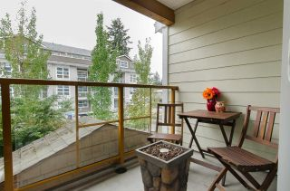"""Photo 17: 209 1969 WESTMINSTER Avenue in Port Coquitlam: Glenwood PQ Condo for sale in """"THE SAPHIRE"""" : MLS®# R2118876"""