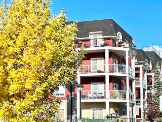 Photo 2: 215 226 MACEWAN Road in Edmonton: Zone 55 Condo for sale : MLS®# E4241529
