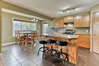 Photo 17: 199 Sagewood Drive SW: Airdrie Detached for sale : MLS®# A1119467
