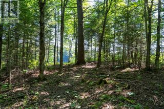 Photo 12: 15 PAULS BAY Road in McDougall: Vacant Land for sale : MLS®# 40146107
