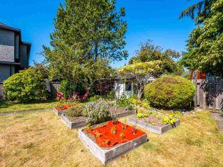 Photo 27: 14485 17 Avenue in Surrey: Sunnyside Park Surrey House for sale (South Surrey White Rock)  : MLS®# R2492269