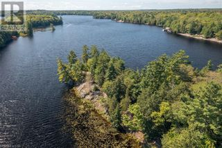 Photo 40: 399 HEALEY LAKE Road in MacTier: House for sale : MLS®# 40163911