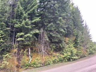 Photo 22: 3,4,6 Armstrong Road in Eagle Bay: Vacant Land for sale : MLS®# 10133907