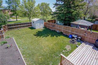 Photo 17: 23 Knightsbridge Drive in Winnipeg: Meadowood Residential for sale (2E)  : MLS®# 1915803