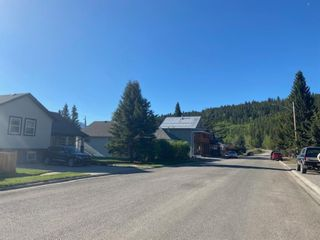 Photo 21: For Sale: 1229 83 Street, Coleman, T0K 0M0 - A1118504