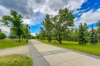 Photo 41: 1005 650 10 Street SW in Calgary: Downtown West End Apartment for sale : MLS®# A1129939