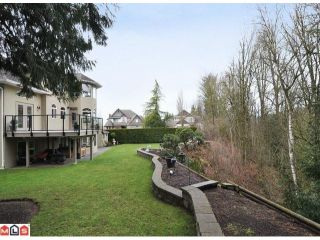 Photo 8: 4296 Shearwater Drive in Abbotsford: House for sale : MLS®# F1203929