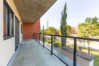 Photo 27: 208 10319 111 Street in Edmonton: Zone 12 Condo for sale : MLS®# E4260894