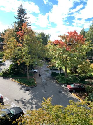 "Photo 14: 306 7411 MINORU Boulevard in Richmond: Brighouse South Condo for sale in ""Woodbridge"" : MLS®# R2620625"