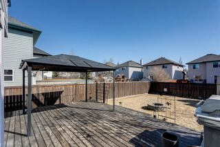 Photo 5: 121 Bridlewood Court SW in Calgary: Bridlewood Detached for sale : MLS®# A1096273