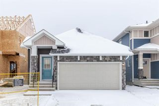 Photo 1: 272 Bayview Street SW: Airdrie Detached for sale : MLS®# A1043688