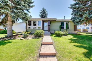Photo 32: 408 QUEENSLAND Circle SE in Calgary: Queensland Detached for sale : MLS®# A1020270