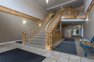 "Photo 14: 306 12464 191B Street in Pitt Meadows: Mid Meadows Condo for sale in ""LASEUR MANOR"" : MLS®# R2147003"
