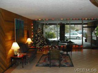 Photo 11: 301 2930 cook St in VICTORIA: Vi Mayfair Condo for sale (Victoria)  : MLS®# 490921