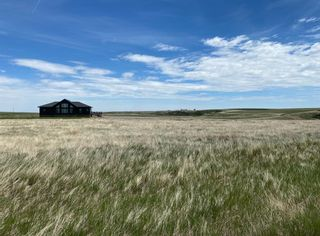 Photo 46: 140043 RANGE ROAD 250: Rural Vulcan County Detached for sale : MLS®# A1049788