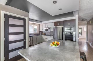 Photo 10: 531 99 Avenue SE in Calgary: Willow Park Detached for sale : MLS®# A1019885