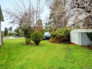 Photo 20: 1170 Munro St in : Es Saxe Point House for sale (Esquimalt)  : MLS®# 859793