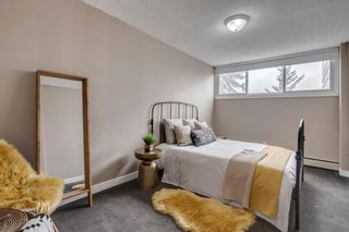 Photo 28: 212 7007 4A Street SW in Calgary: Kingsland Apartment for sale : MLS®# A1112502