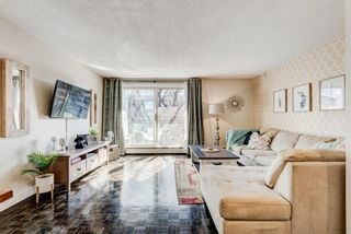 Photo 6: 404 120 24 Avenue SW in Calgary: Mission Apartment for sale : MLS®# A1079776