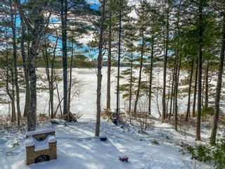 Photo 19: 168 Beach Cove Pathway in Molega: 406-Queens County Residential for sale (South Shore)  : MLS®# 202104535