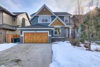 Main Photo: 219 Auburn Sound View SE in Calgary: Auburn Bay Detached for sale : MLS®# A1065304