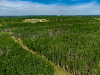Photo 9: TWP 624 Rge Rd 423: Rural Bonnyville M.D. Rural Land/Vacant Lot for sale : MLS®# E4227702