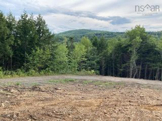 Photo 7: 1504 Greenvale Road in Macphersons Mills: 108-Rural Pictou County Vacant Land for sale (Northern Region)  : MLS®# 202122532