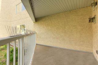 Photo 30: 7 10331 106 Street in Edmonton: Zone 12 Condo for sale : MLS®# E4246489